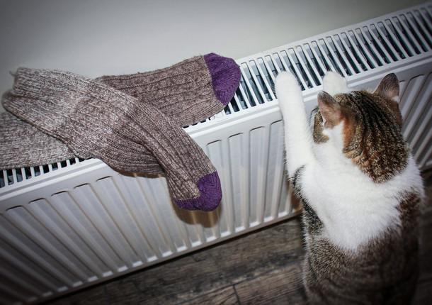 В дома тольятинцев начинает поступать тепло